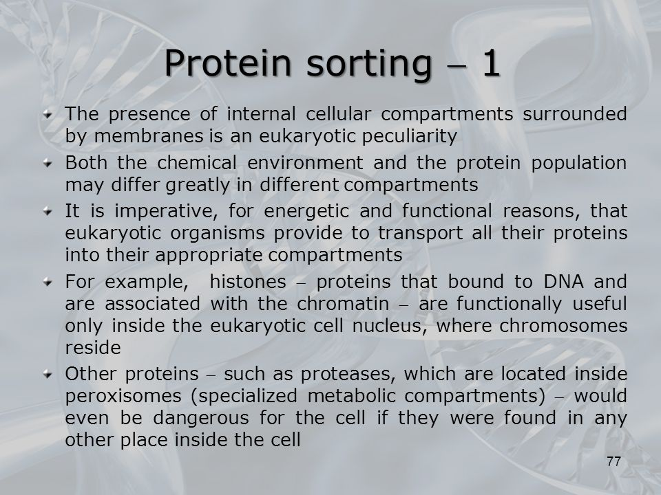 Protein sorting  1 The presence of internal cellular compartments surrounded by membranes is an eukaryotic peculiarity.