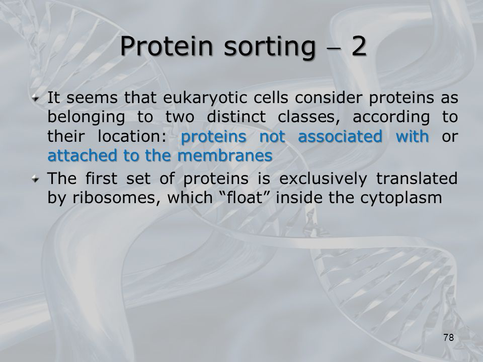 Protein sorting  2