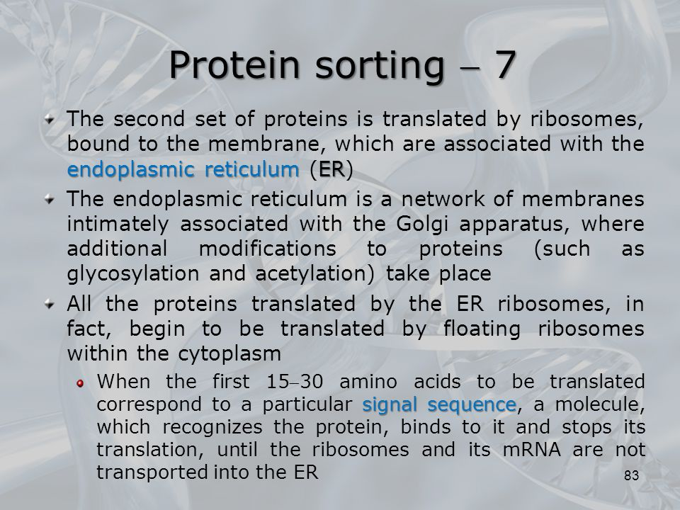 Protein sorting  7