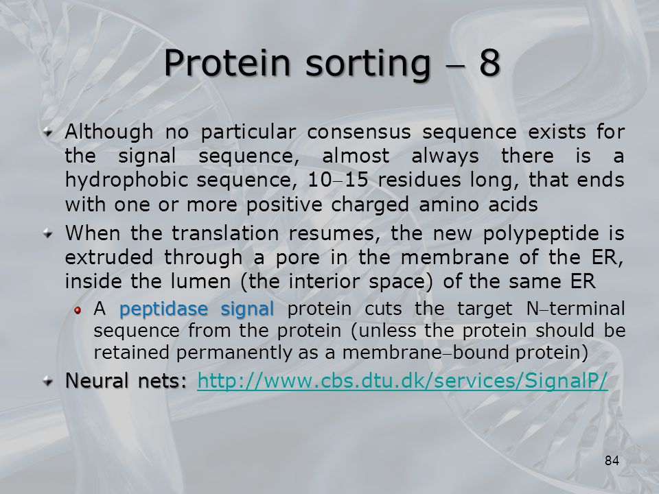 Protein sorting  8