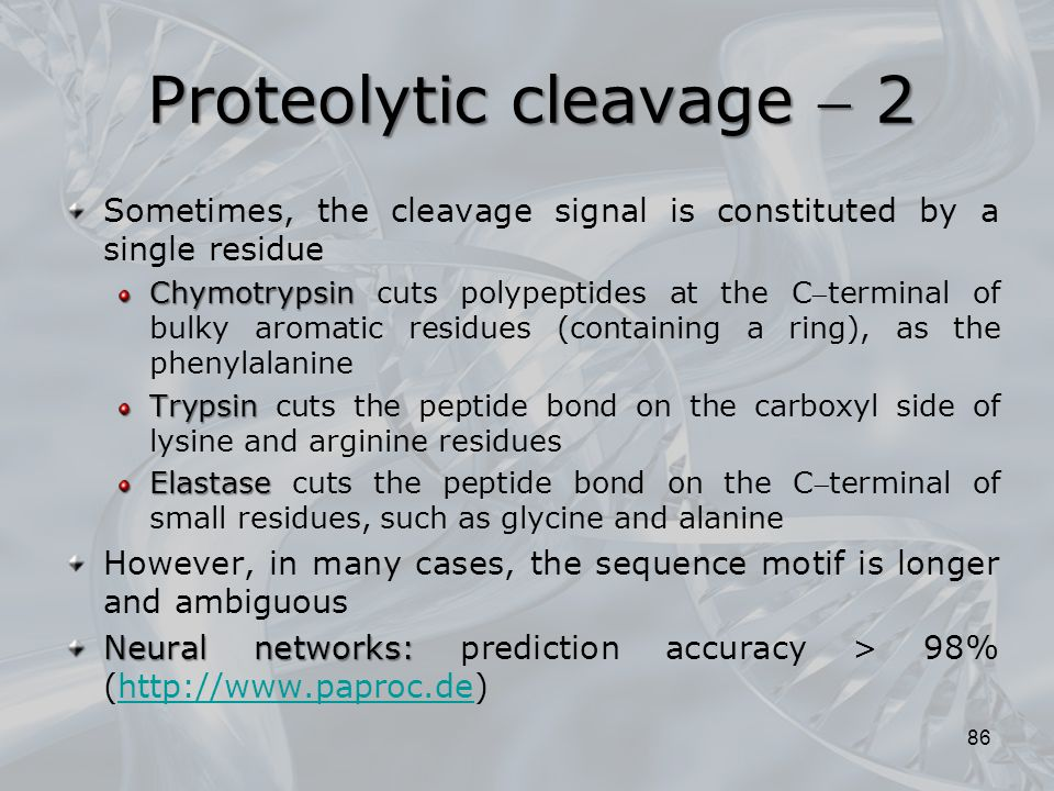 Proteolytic cleavage  2
