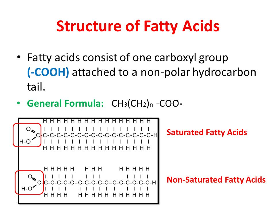 Fatty acids formula