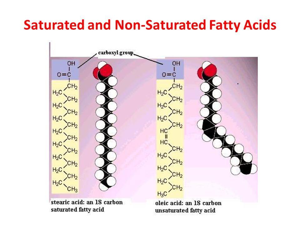 Saturated and Non-Saturated Fatty Acids