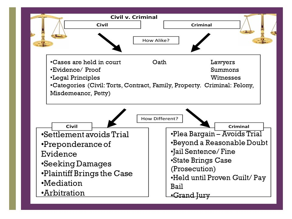 the trial principles and evidence pdf