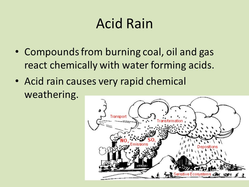 The Perfect Explanation of the Harsh Effects of Acid Rain on Plants