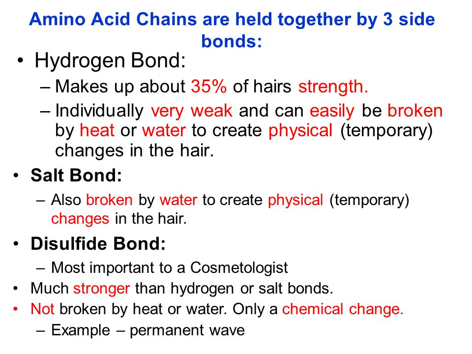 Amino Acid Chains are held together by 3 side bonds:
