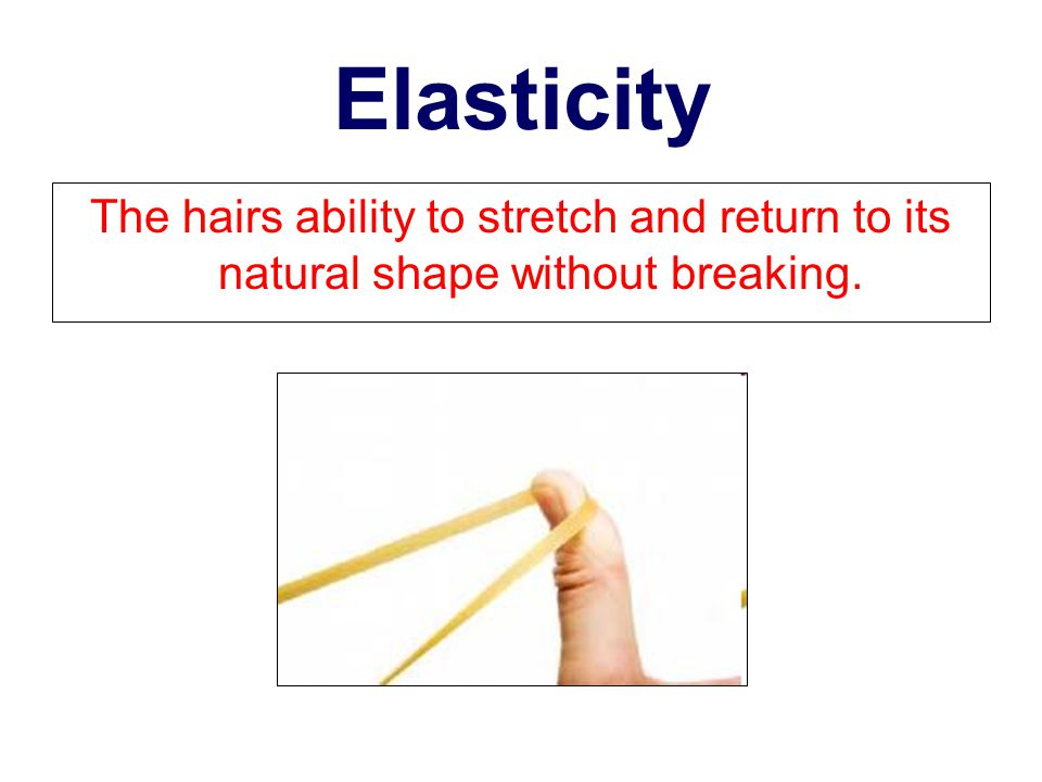 Elasticity The hairs ability to stretch and return to its natural shape without breaking.