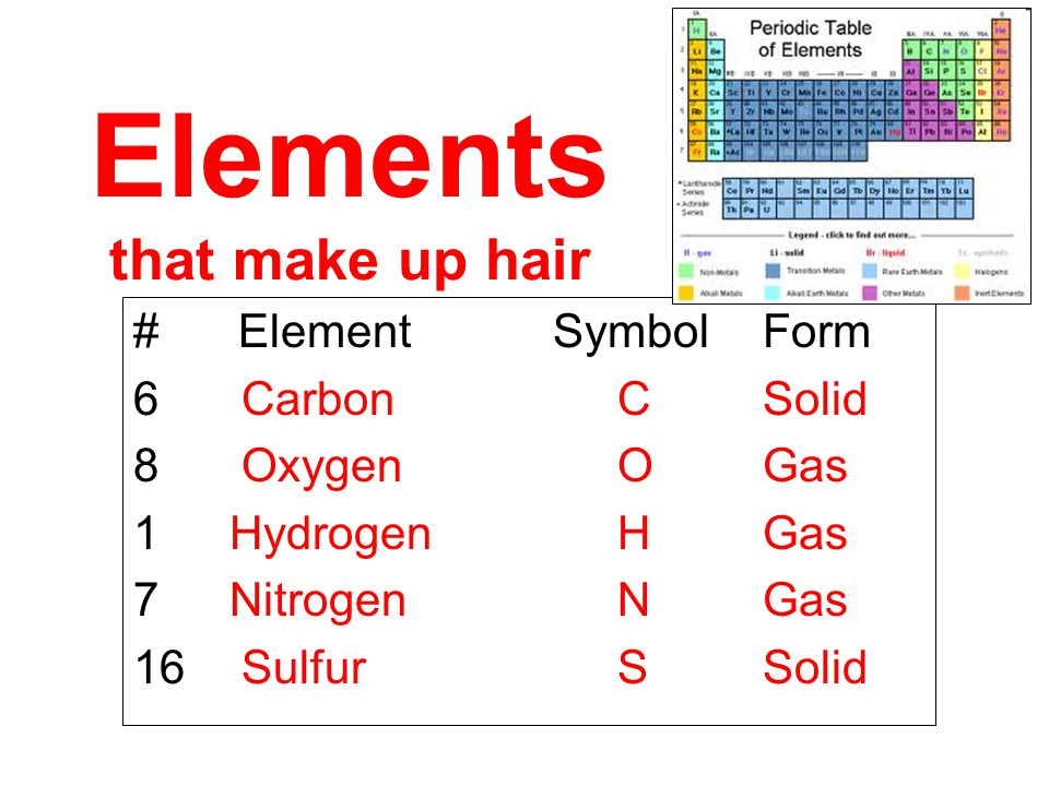 Elements that make up hair