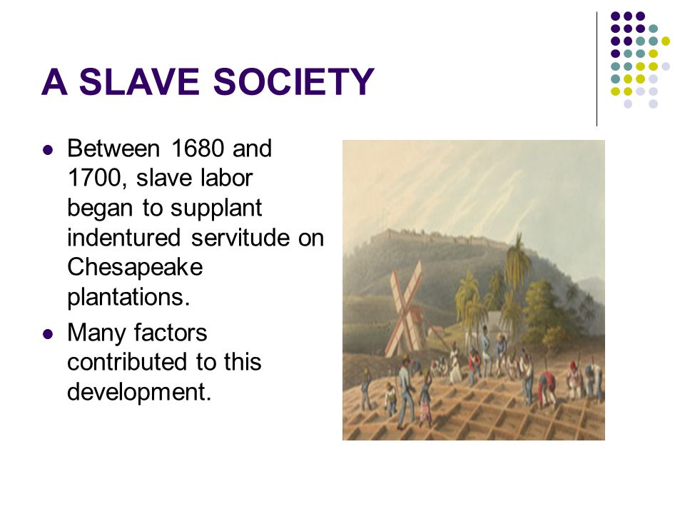 the factors that contributed to the development of slavery in america The southern colonies had fertile farmlands which contributed to the rise of cash crops such as rice, tobacco, and indigo plantations developed as nearly subsistent communities slavery allowed wealthy aristocrats and large landowners to cultivate huge tracts of land.