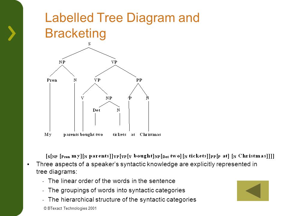 Labelled Tree Diagram and Bracketing