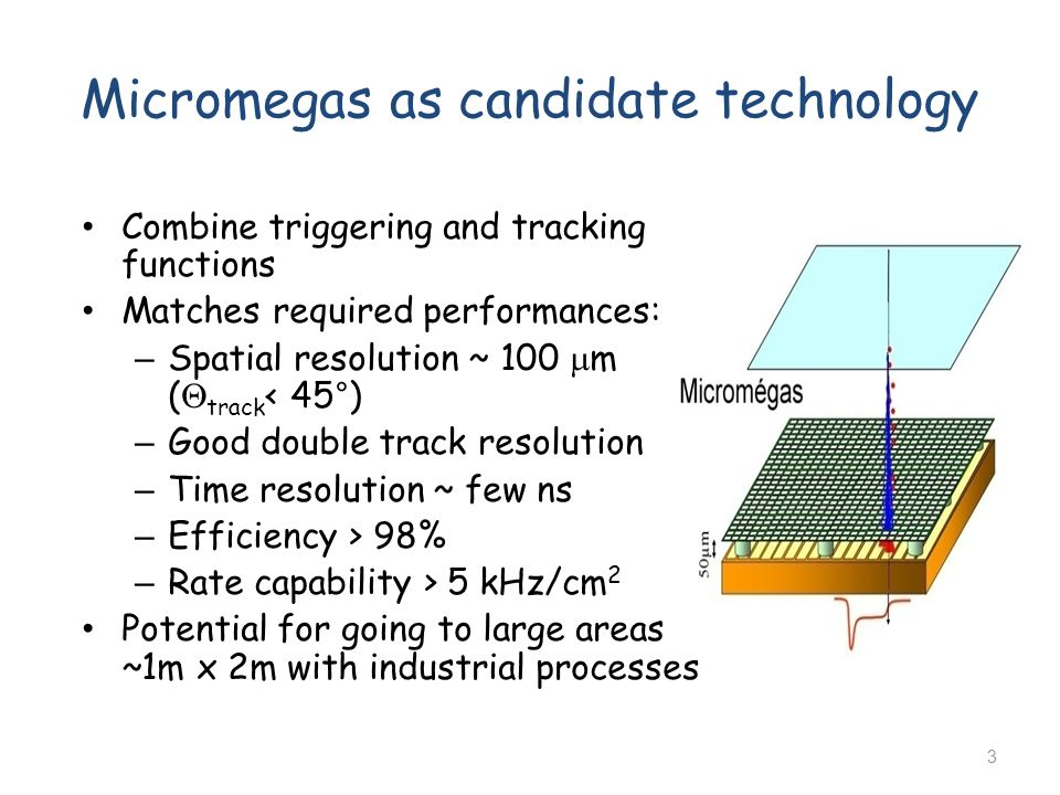 Micromegas as candidate technology
