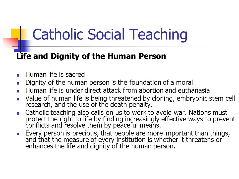 Catholic social teachings in life