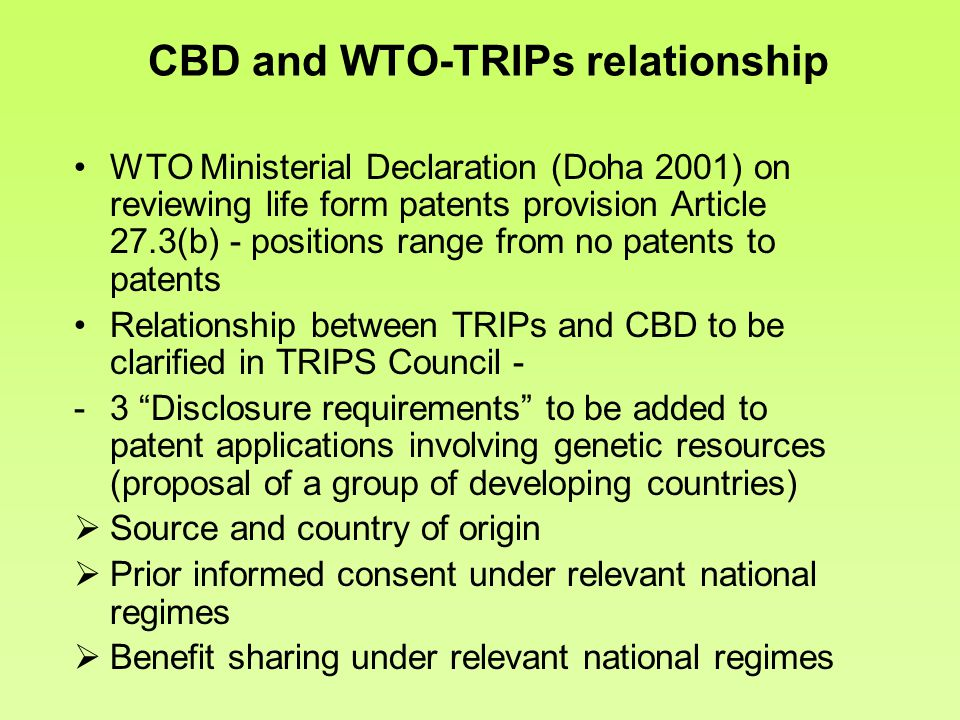 the effects of the wto on