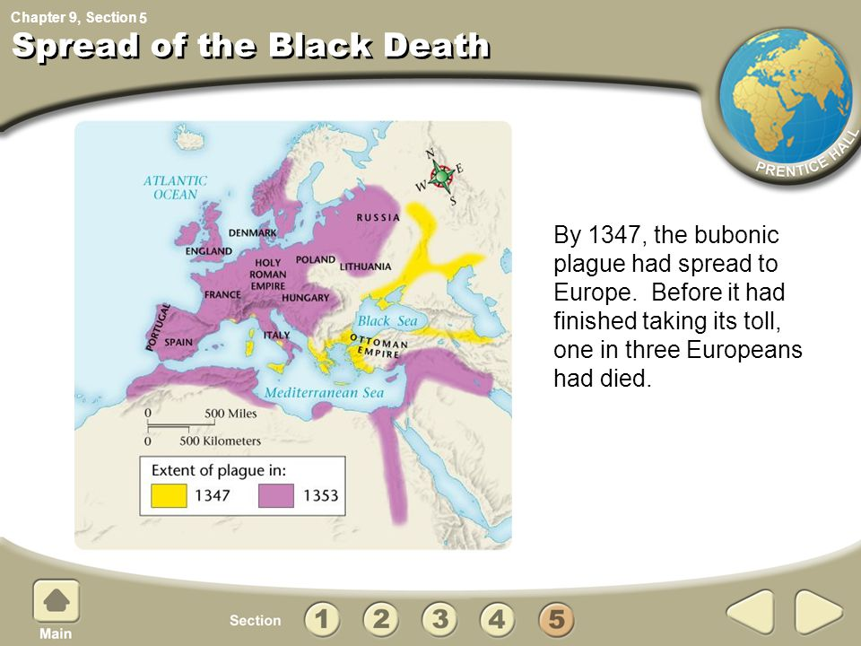 an analysis of the effects that the plague or the black death had on the economic and social life of What in your view were the most important effects that the plague had on later medieval european society  the plague known as the black death economic, or.