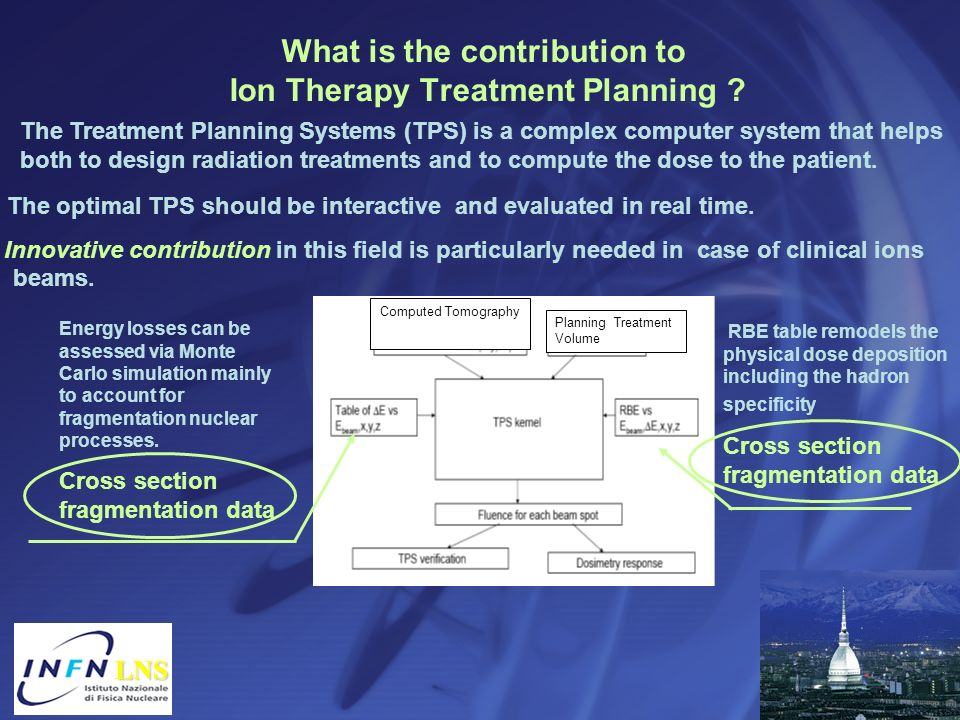 What is the contribution to Ion Therapy Treatment Planning