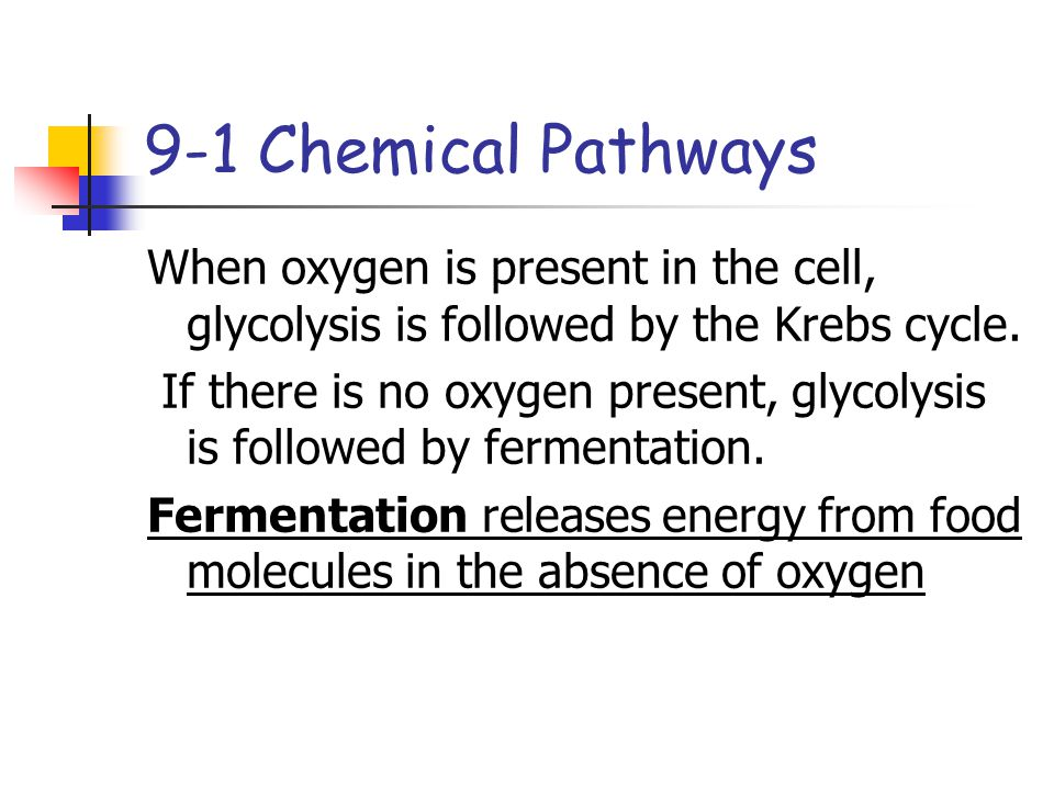 9-1 Chemical Pathways When oxygen is present in the cell, glycolysis is followed by the Krebs cycle.