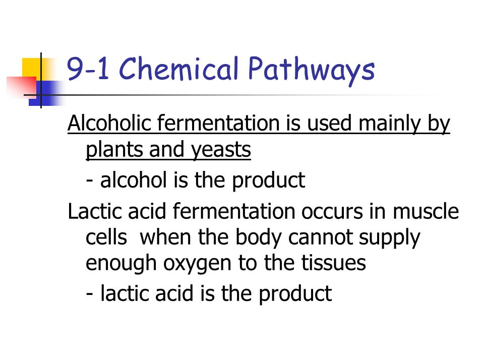 9-1 Chemical Pathways Alcoholic fermentation is used mainly by plants and yeasts. - alcohol is the product.