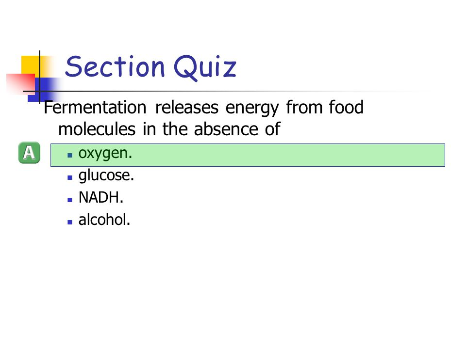 Section Quiz Fermentation releases energy from food molecules in the absence of. oxygen. glucose.