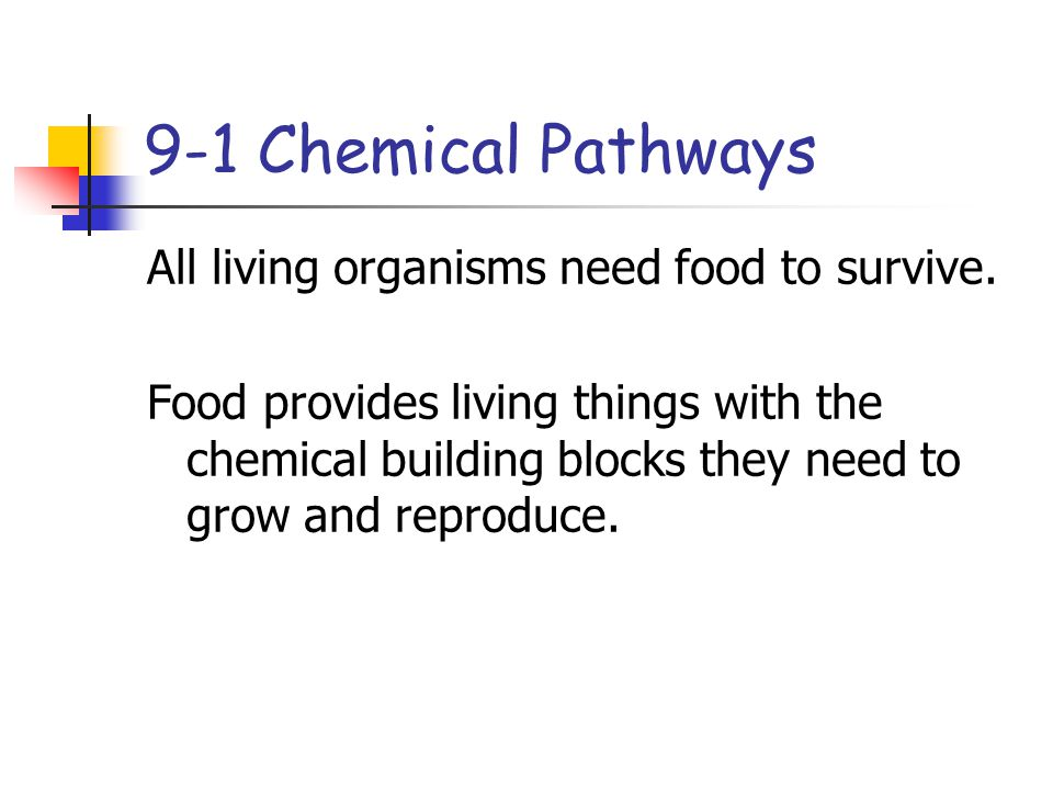 9-1 Chemical Pathways All living organisms need food to survive.