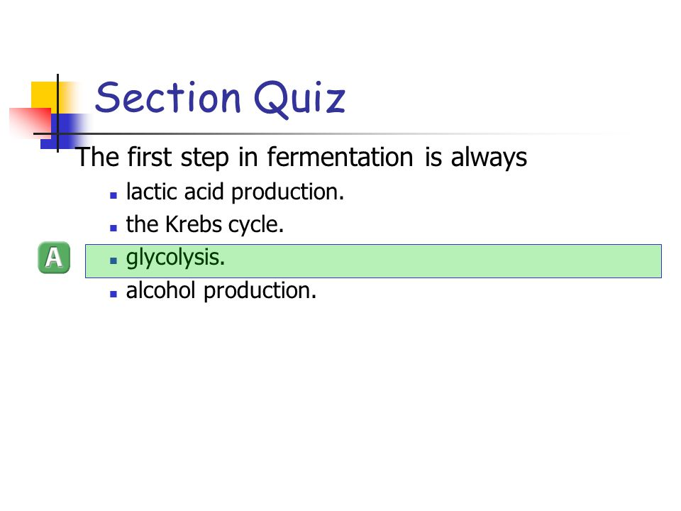 Section Quiz The first step in fermentation is always