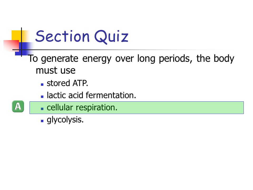 Section Quiz To generate energy over long periods, the body must use