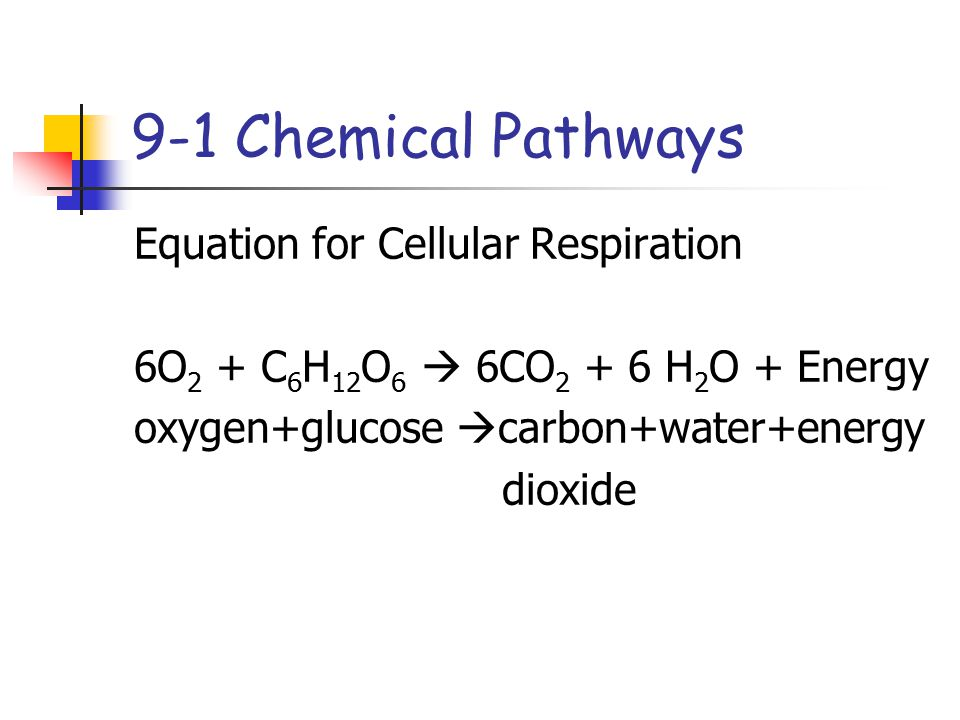 9-1 Chemical Pathways Equation for Cellular Respiration