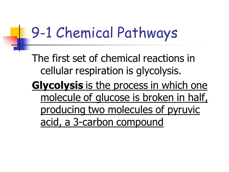 9-1 Chemical Pathways The first set of chemical reactions in cellular respiration is glycolysis.