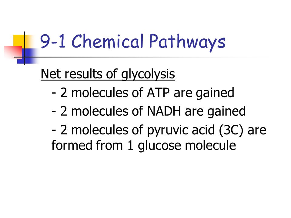 9-1 Chemical Pathways Net results of glycolysis