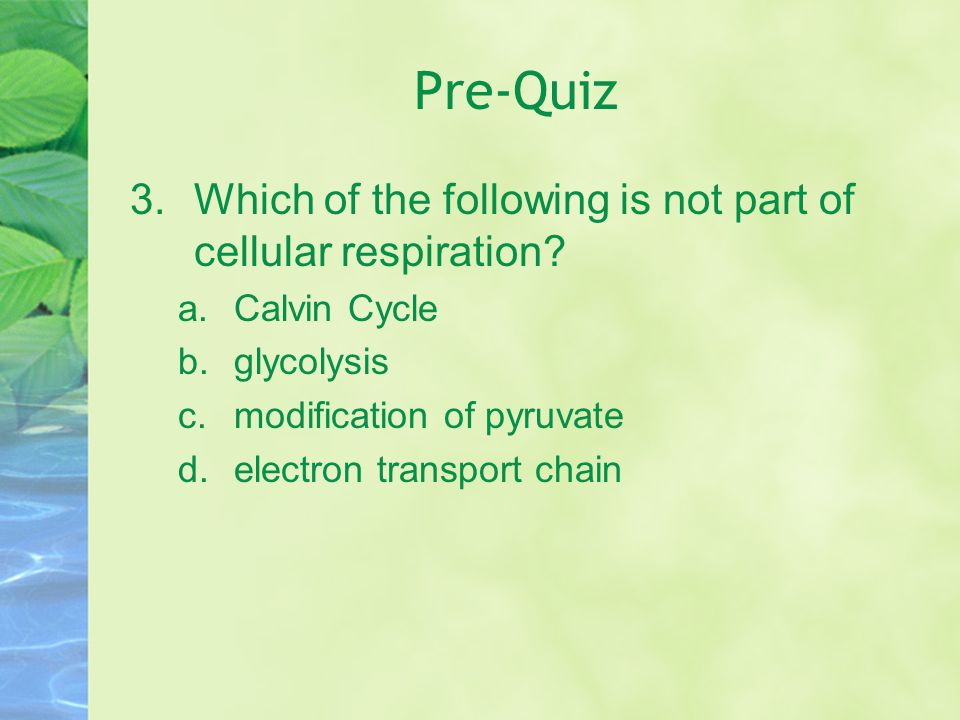 Pre-Quiz Which of the following is not part of cellular respiration