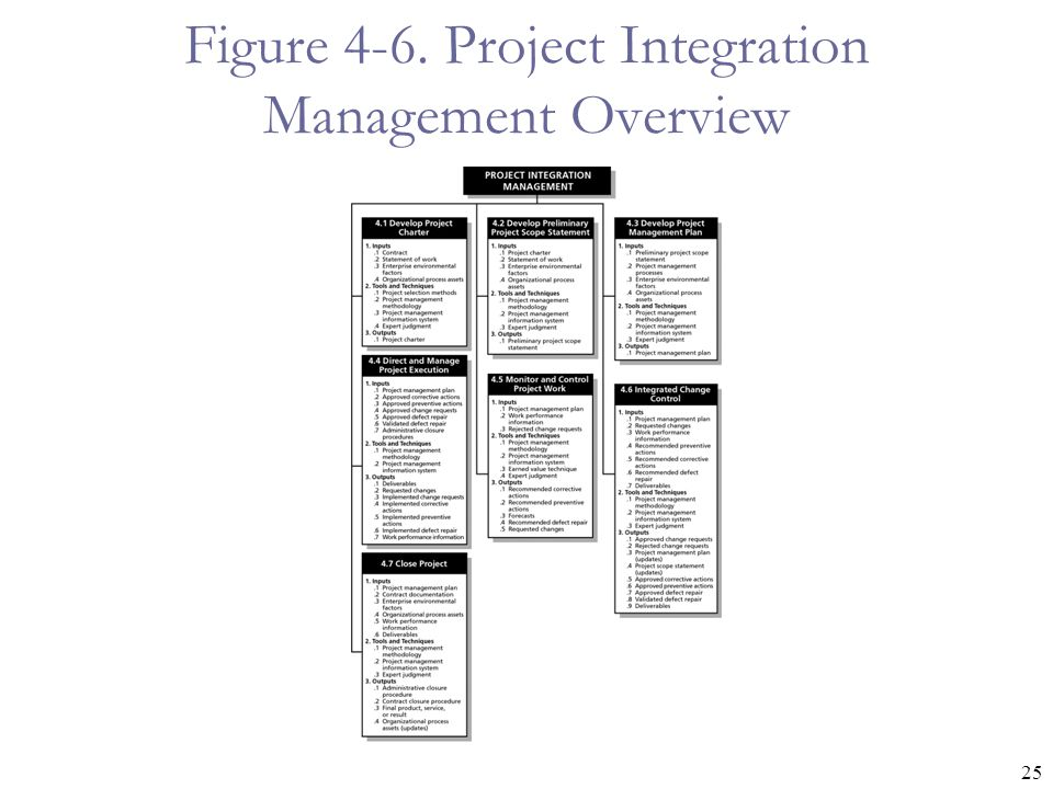 Figure 4-6. Project Integration Management Overview