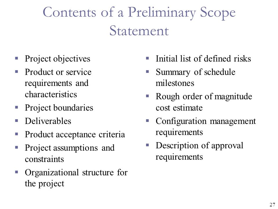 Contents of a Preliminary Scope Statement