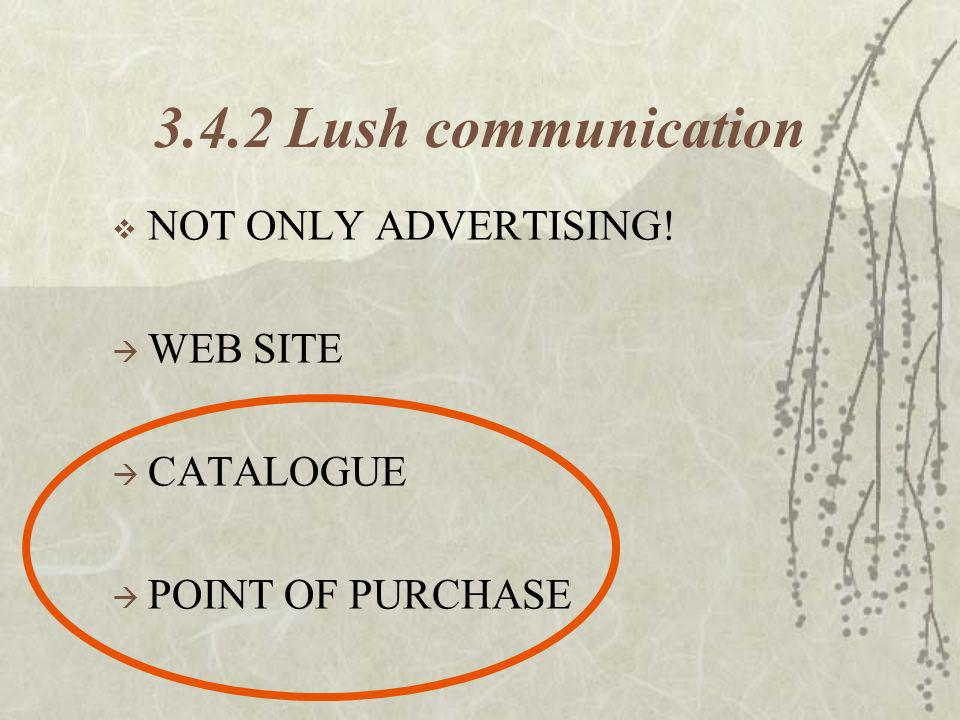 3.4.2 Lush communication NOT ONLY ADVERTISING! WEB SITE CATALOGUE