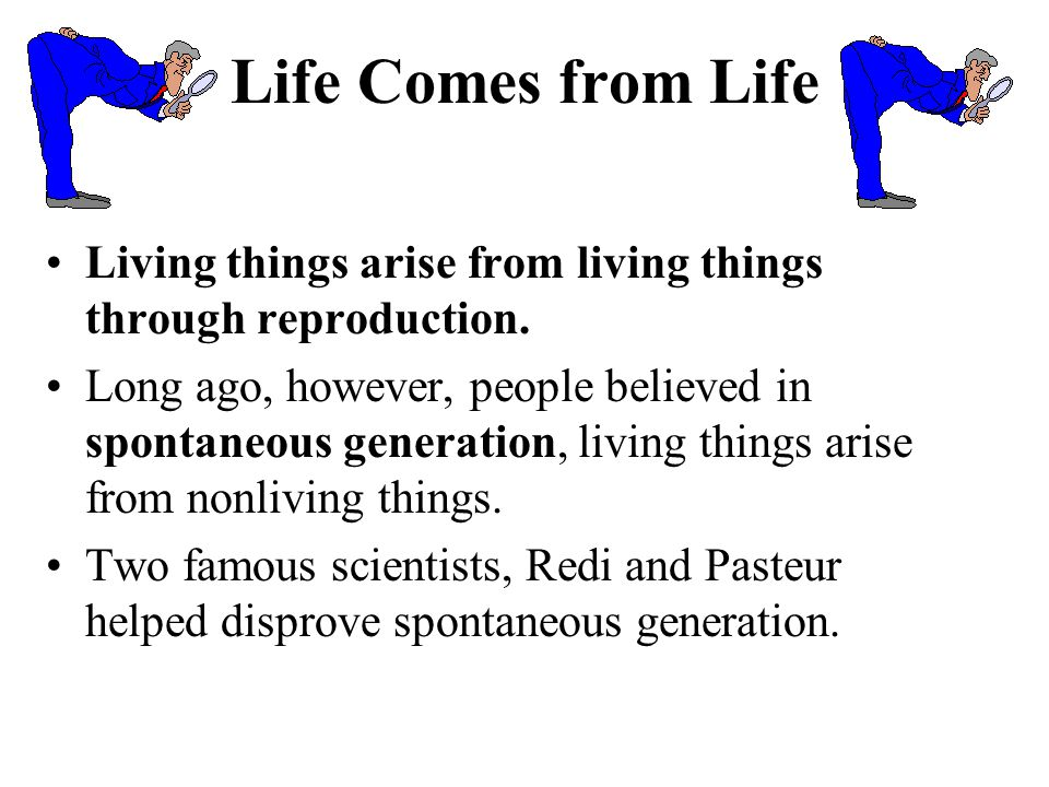 Life Comes from Life Living things arise from living things through reproduction.