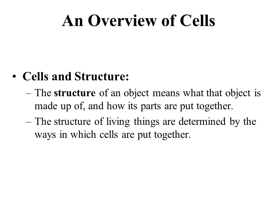 An Overview of Cells Cells and Structure: