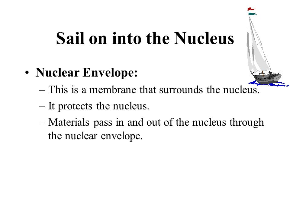 Sail on into the Nucleus