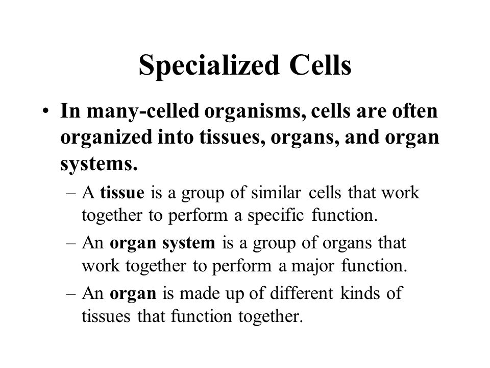 Specialized Cells In many-celled organisms, cells are often organized into tissues, organs, and organ systems.