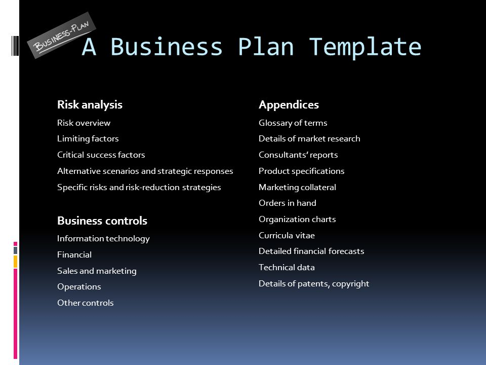 Critical risks in a business plan