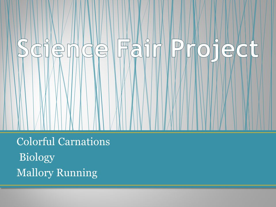 1 science fair project colorful carnations biology mallory running