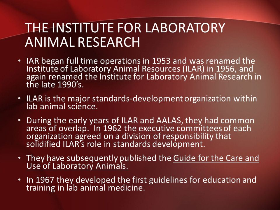 Animal research and diabetes: Now the truth must be told – Part 2