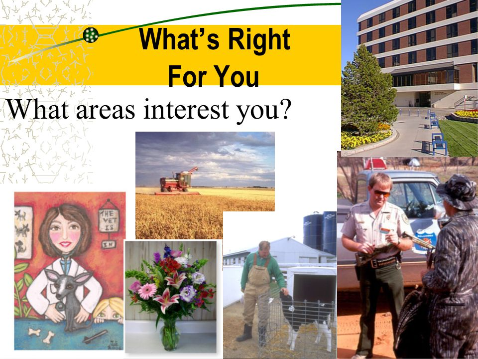 What's Right For You What areas interest you