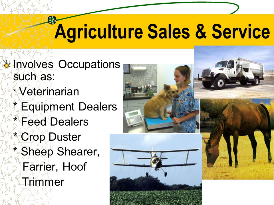 Agriculture Sales & Service