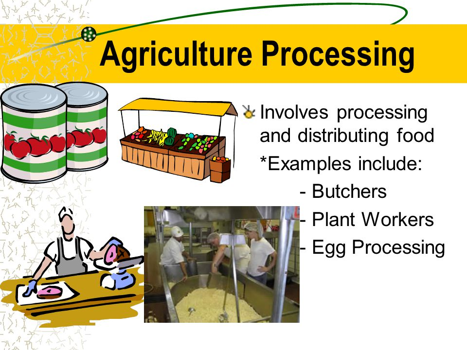 Agriculture Processing