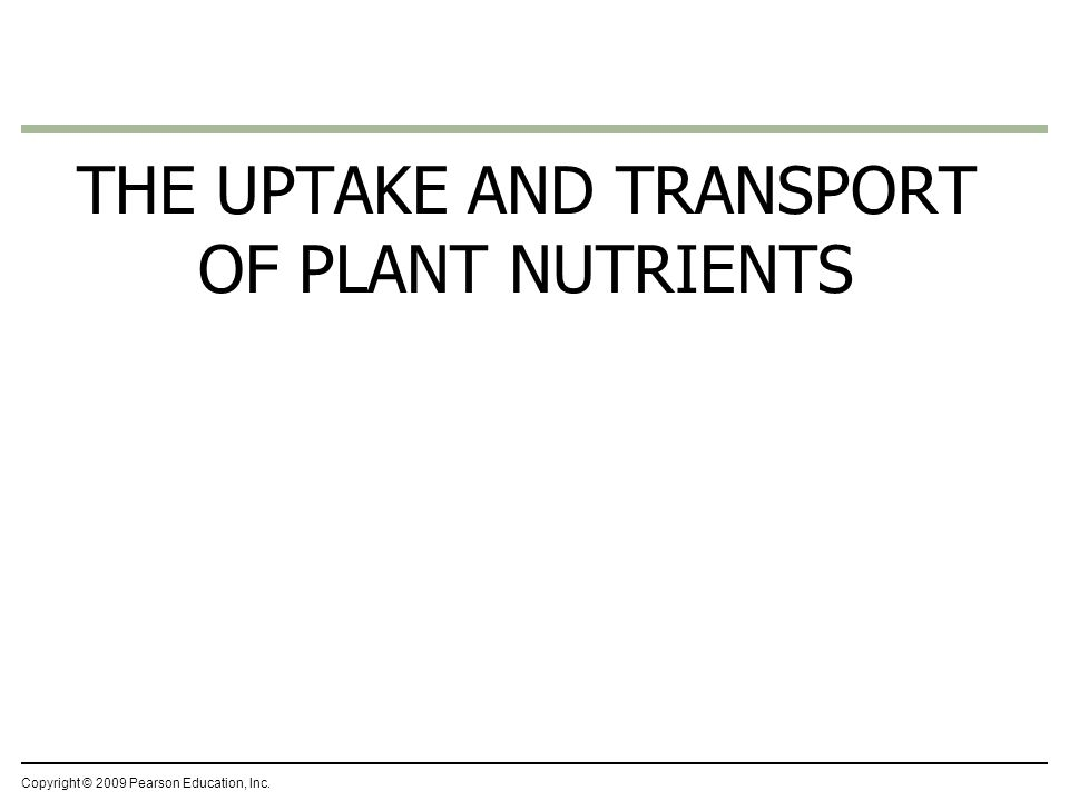 plant nutrients inc The andersons plant nutrient group formulates, stores, and distributes nutrient,  specialty, and industrial inputs and corncob based products through our.