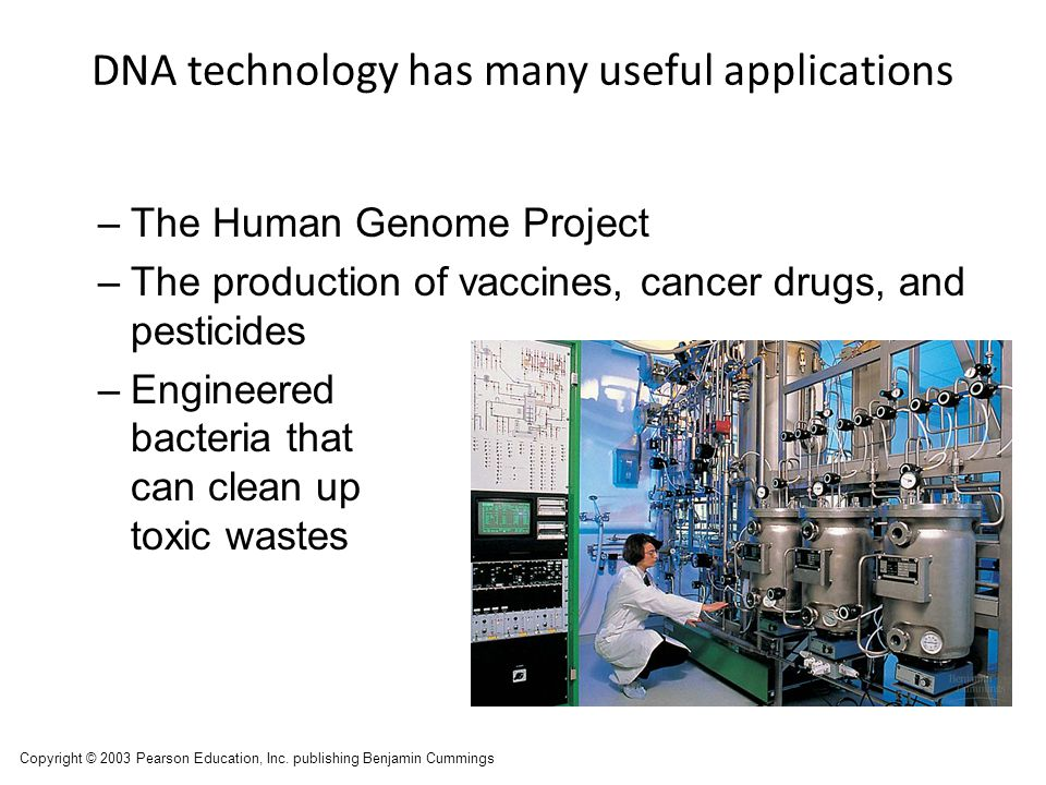 DNA technology has many useful applications