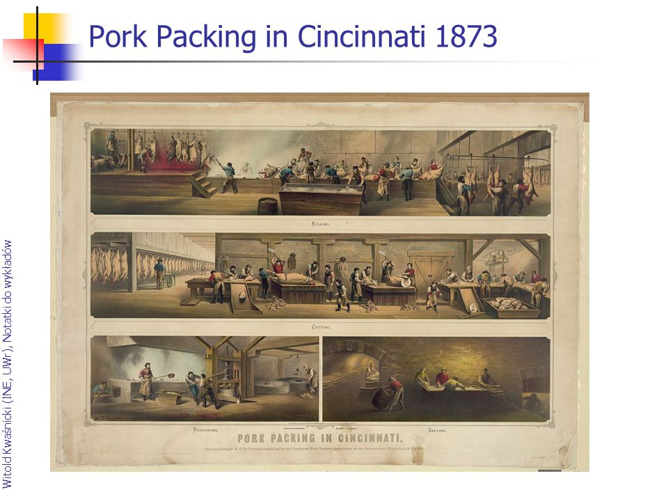 Pork Packing in Cincinnati 1873