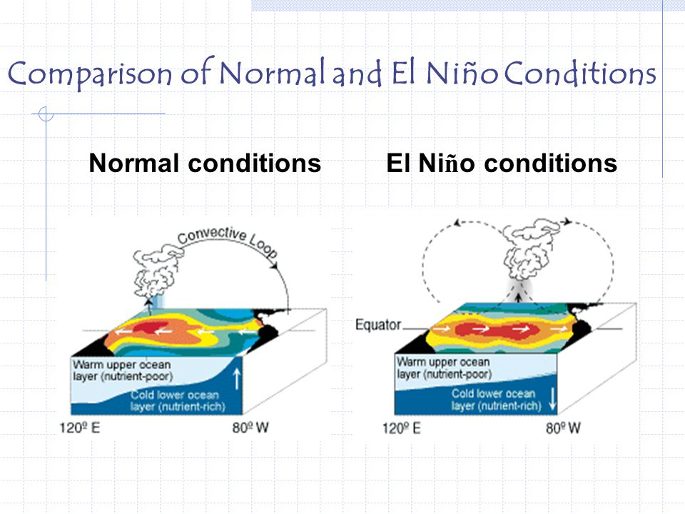 El Nino & La Nina. - ppt download