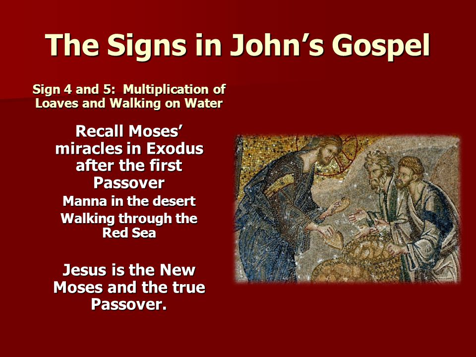 the eight miracle signs in john Learn the special meaning for you from the miracle of multiplying a  jesus feeds the 5000  philip replied that even eight months' wages would not be enough to.