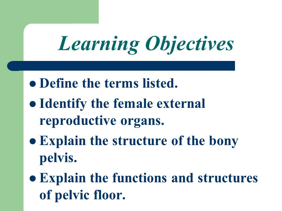 Anatomy & Physiology Of Female Reproductive System - ppt video ...