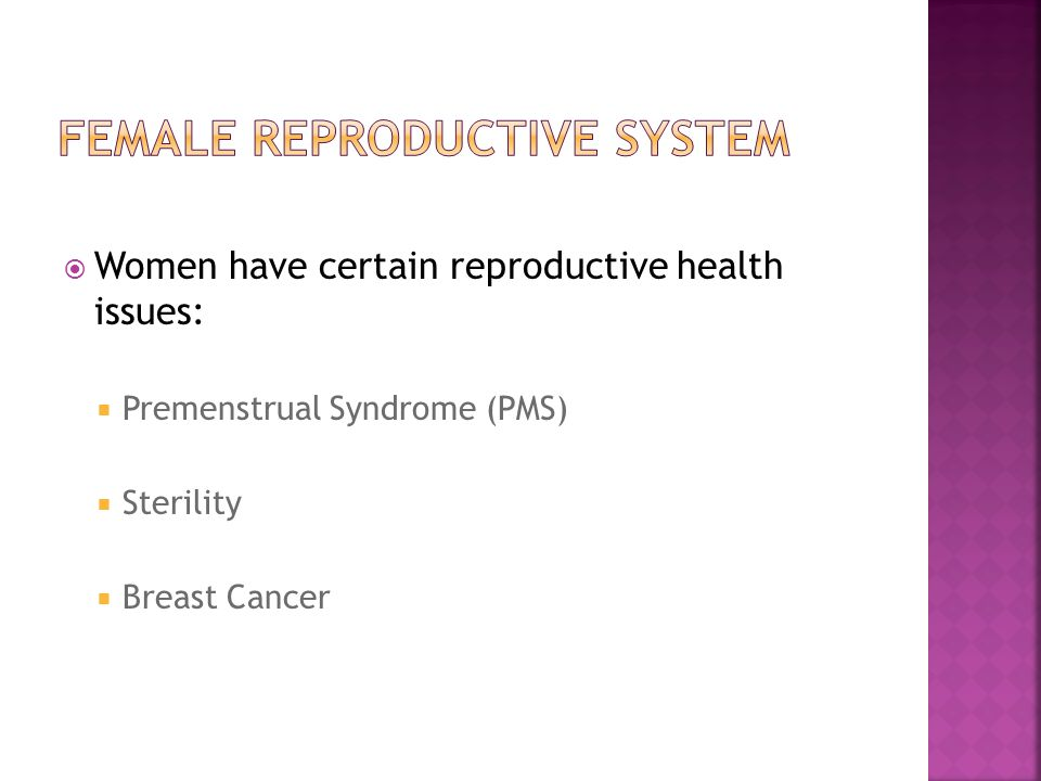the female reproduction system - ppt download, Muscles