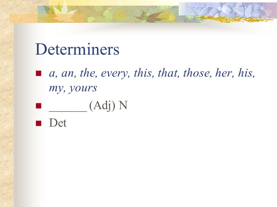 Determiners a, an, the, every, this, that, those, her, his, my, yours